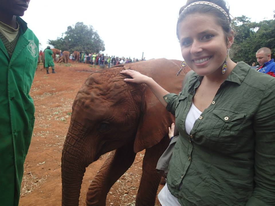 baby elephant, travel motivation, elephant orphanage in nairobi kenya